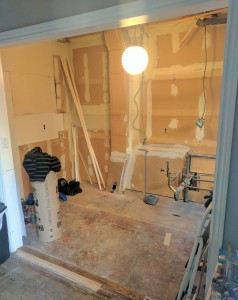 Kitchen Reno early